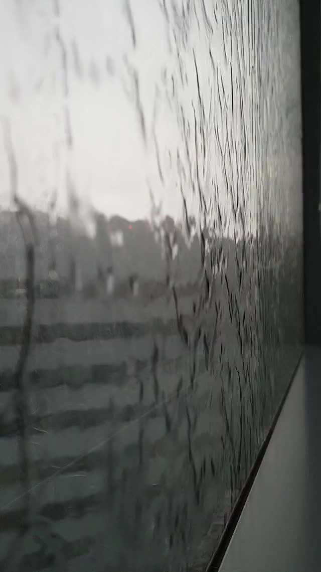 Watch and share Rainy Day GIFs by ohomeme on Gfycat