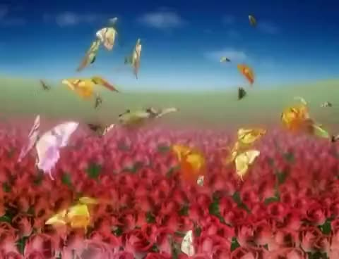 Watch and share Butterfly Flowers Motion Graphic Animated Background - Free Video Download GIFs on Gfycat