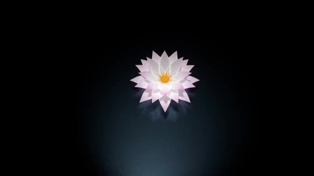 Watch Lotus GIF by @private_citizen on Gfycat. Discover more related GIFs on Gfycat