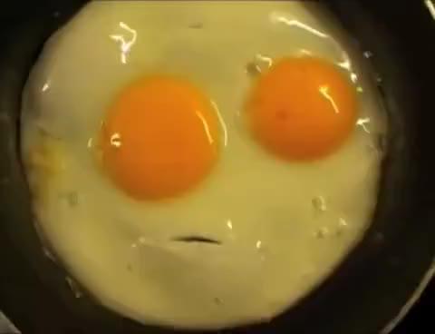 Watch and share Talking Eggs! Sprechende Eier! GIFs on Gfycat