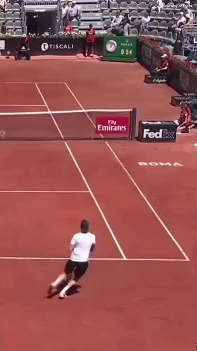Watch and share Tennis Shot Of The Year GIFs on Gfycat