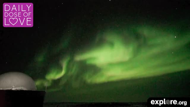 Watch Northern Lights GIF by Explore.org (@exploreorg) on Gfycat. Discover more animal, animal live cam, animal livecam, baby animal, canada, daily dose of love, dailydoseoflove, explore, explore.org, exploreorg, live cam, livecam, love, nature, nature livecam, northern lights, organic, pure GIFs on Gfycat
