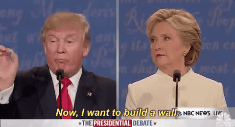 donald trump, hillary clinton, Trump Bild a GIFs