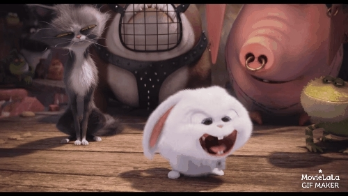 animalgifs, funny, movies, The Secret Life of Pets Trailer GIFs