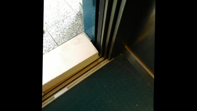 Watch and share Elevator Door (reddit) GIFs by tommihpunkt on Gfycat