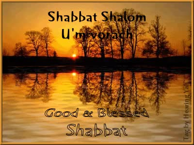 Watch and share Shabbat Shalom Good Blessed Shabbat Animated Picture GIFs on Gfycat
