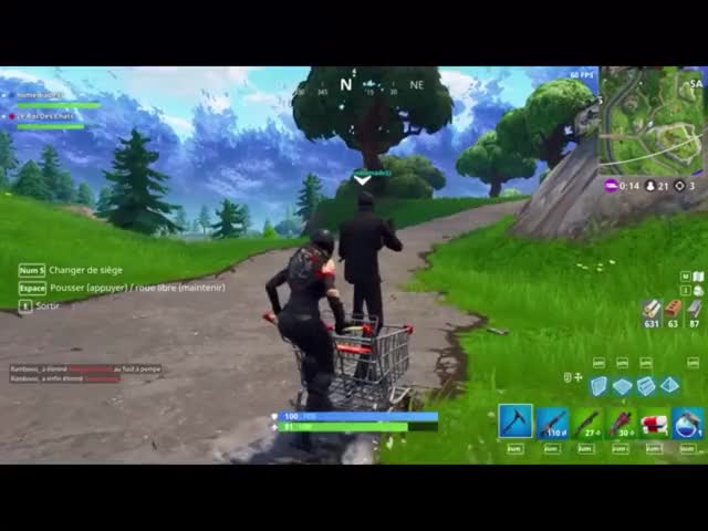 Watch and share Shopping Cart GIFs and Fortnitebr GIFs by Star on Gfycat