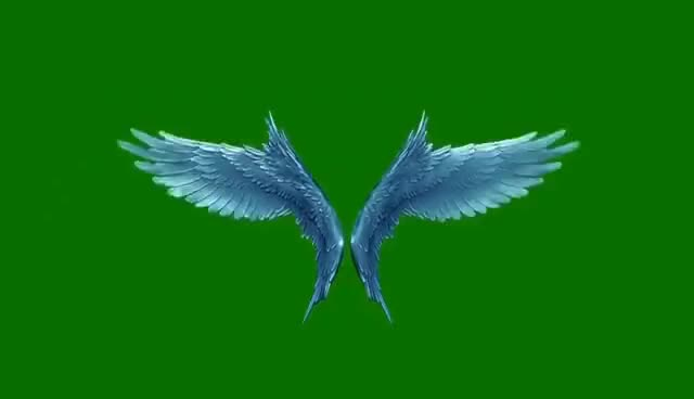 Watch and share Green Screen Angels Flapping Gold Wings Particles - Footage PixelBoom CG GIFs on Gfycat