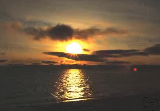 Watch this dawn GIF on Gfycat. Discover more dawn, nature, sun, sunny, sunrise GIFs on Gfycat