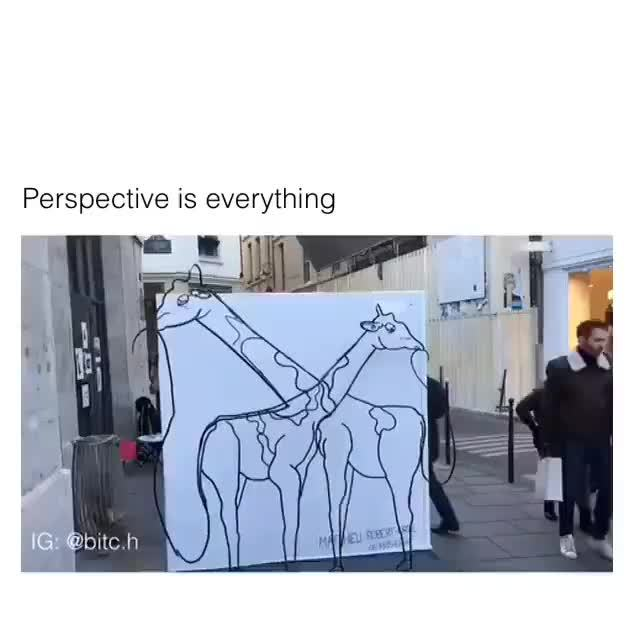Perspective GIFs