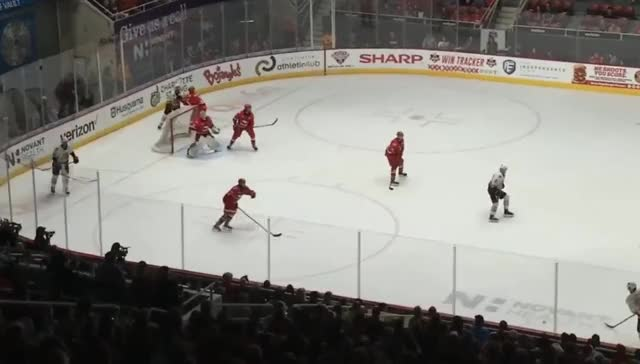 Watch and share 2019-06-02 Charlotte Checkers - Chicago Wolves 1:1 GIFs by Harry on Gfycat