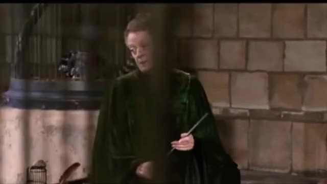 Watch and share Mcgonagall GIFs and Professor GIFs on Gfycat