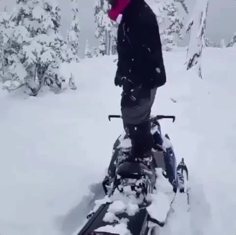 Watch this snow GIF on Gfycat. Discover more nature, snow, snowing GIFs on Gfycat