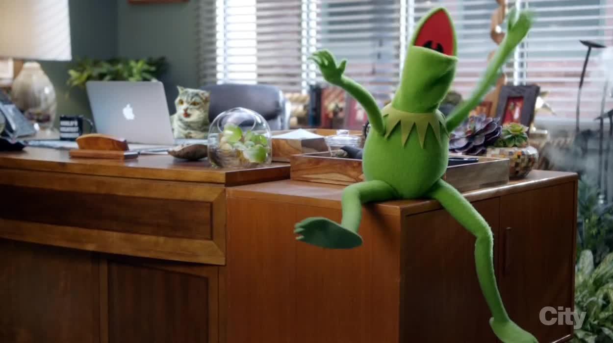 HarrisHoffman, Kermit, Muppets, Yaaaay GIFs