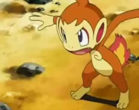 Battles, Pokemon, Battles Pokemon GIFs