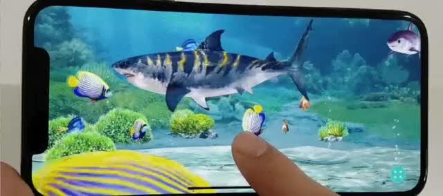 Watch and share FishingStrike Aquarium GIFs on Gfycat