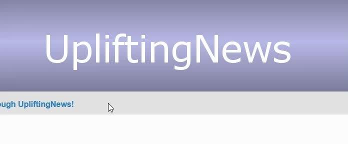 upliftingnews,  GIFs
