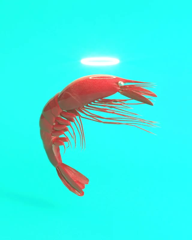 Watch and share Shrimp GIFs on Gfycat
