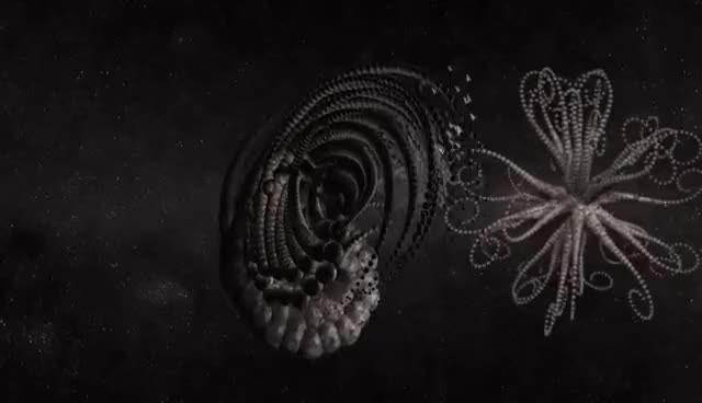 Watch and share Space Engeneering - Mandelbulb 3D & Groboto Fractal Animation GIFs on Gfycat