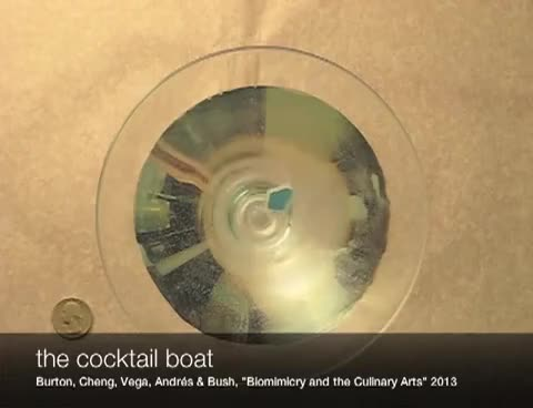 Watch cocktail GIF on Gfycat. Discover more boat, bug, cocktail, inspired GIFs on Gfycat