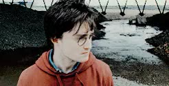 Watch this daniel radcliffe GIF on Gfycat. Discover more *gifs, by enid, daniel radcliffe, danradedit, harry potter, hpedit GIFs on Gfycat