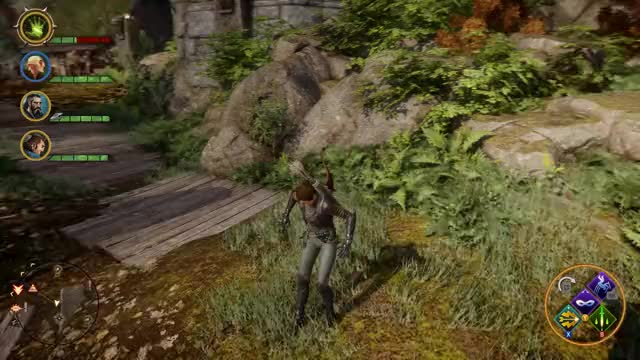 Watch and share Dragon Age Inquisition 2019.01.23 - 21.00.45.02 GIFs on Gfycat