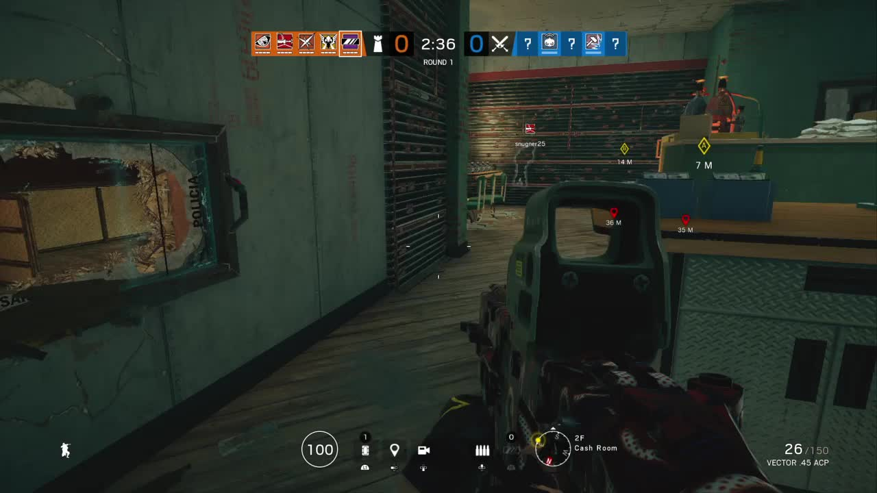 Gaming, PS4share, PlayStation 4, Tom Clancy's Rainbow Six® Siege, weavedawg, Mira as intended GIFs