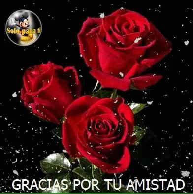 Watch and share Gracias Por Tu Amistad. GIFs on Gfycat