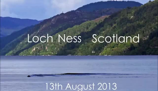 Watch and share Loch Ness Monster Or What - You Decide GIFs on Gfycat