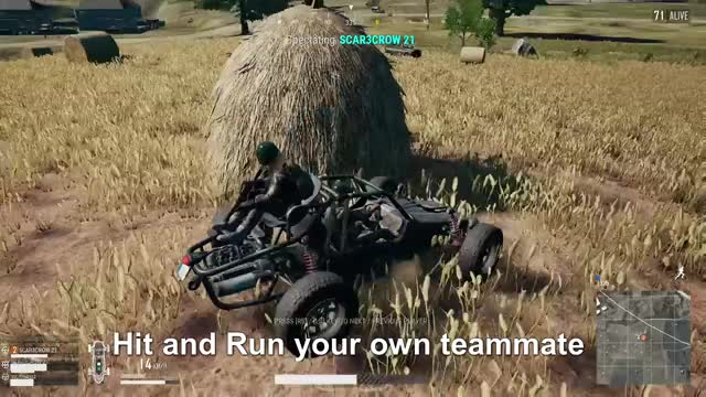 Hit and Run you team