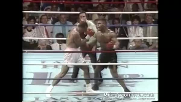 "Watch Seeing this reminded me of hearing Joe talk about Tyson in his heyday, ""He was just out there SMASHIN people."" [x-post /r/HadToHurt] (reddit) GIF on Gfycat. Discover more hadtohurt GIFs on Gfycat"