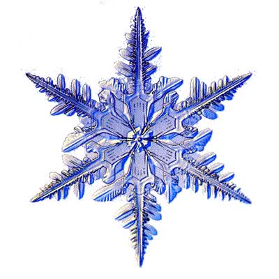 Watch and share File Snowflake Gif Uncyclopedia The Content Free Encyclopedia GIFs on Gfycat