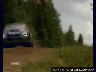 Rally GIFs
