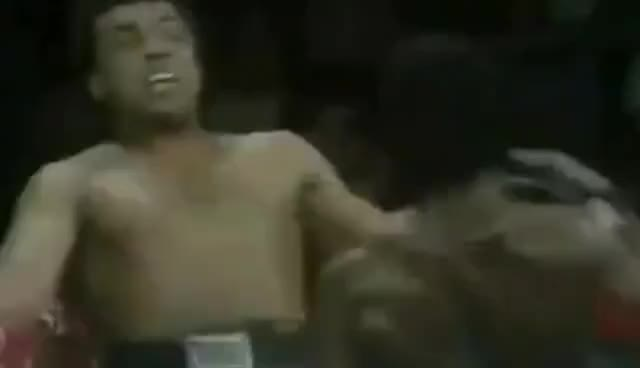 Watch Muhammad ali 2016 HD GIF on Gfycat. Discover more related GIFs on Gfycat