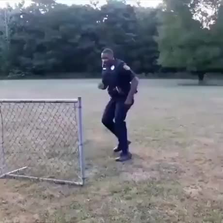 Different ways of hopping a fence - gif