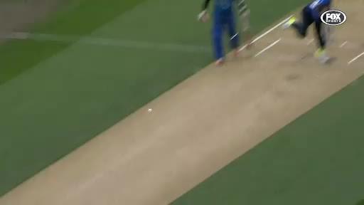 Cricket, SuperAthleteGifs, Mitchell Santner's amazing catch (reddit) GIFs