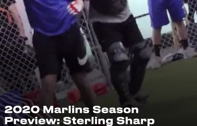 Watch and share Miami Marlins GIFs by Ely Sussman on Gfycat