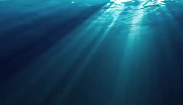 Watch and share Undersea GIFs on Gfycat