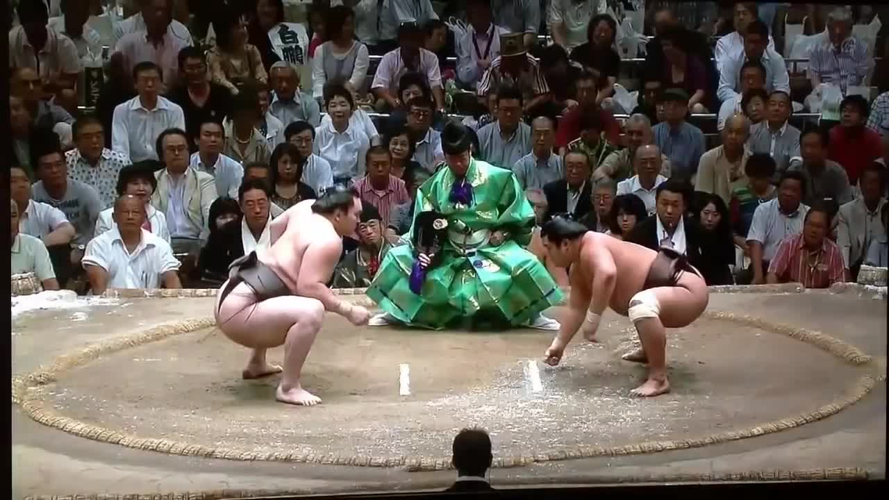 BetterEveryLoop, Sumo bout ends in nasty knockout (reddit) GIFs