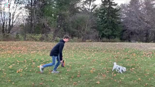 Working off Thanksgiving dinner with a laser battle #armogear #laserbattle #thanksgiving #family thanksgiving laserbattle family armogear GIF