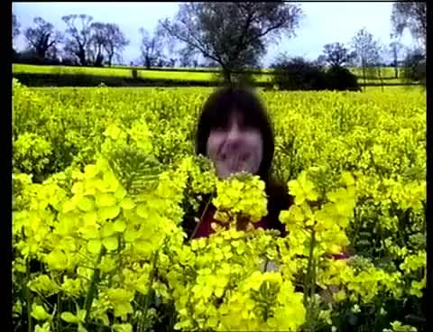Watch and share Bruce Loves Flowers <3 GIFs on Gfycat