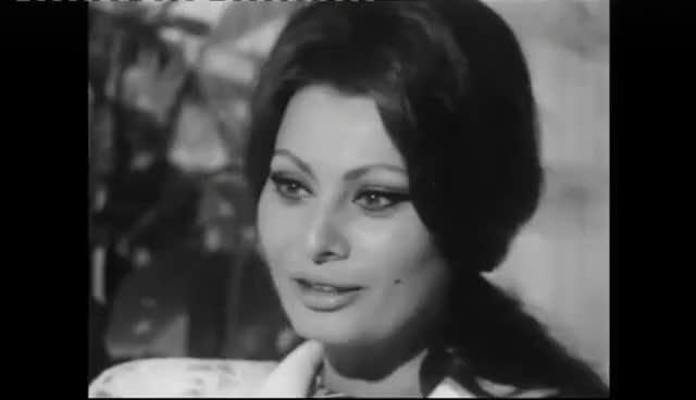 Watch Sophia Loren actress GIF on Gfycat. Discover more celebs, sophia loren GIFs on Gfycat