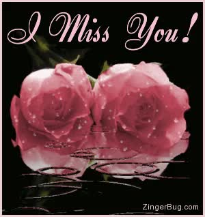 Watch and share Miss You Pink Roses With Raindrops GIFs on Gfycat