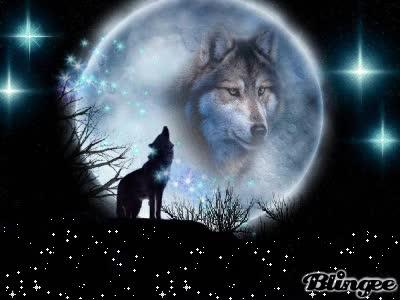 Watch and share Wolfs Mond GIFs on Gfycat