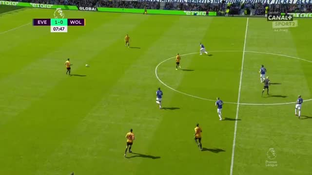 Watch and share Everton GIFs and Soccer GIFs by potepiony on Gfycat