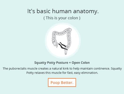 Watch and share Human Anatomy GIFs on Gfycat