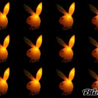 Watch and share Playboy GIFs on Gfycat