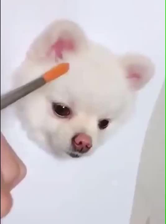 Watch and share Painting GIFs and Dog GIFs on Gfycat