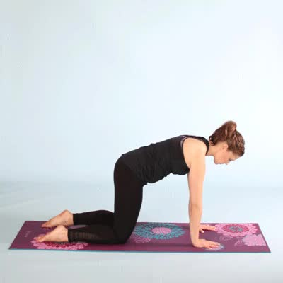 Watch and share 400x400-Plank Pose GIFs by Healthline on Gfycat