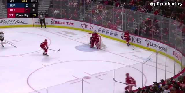 Watch and share Detroit Red Wings GIFs and Buffalo Sabres GIFs by peterwiim on Gfycat